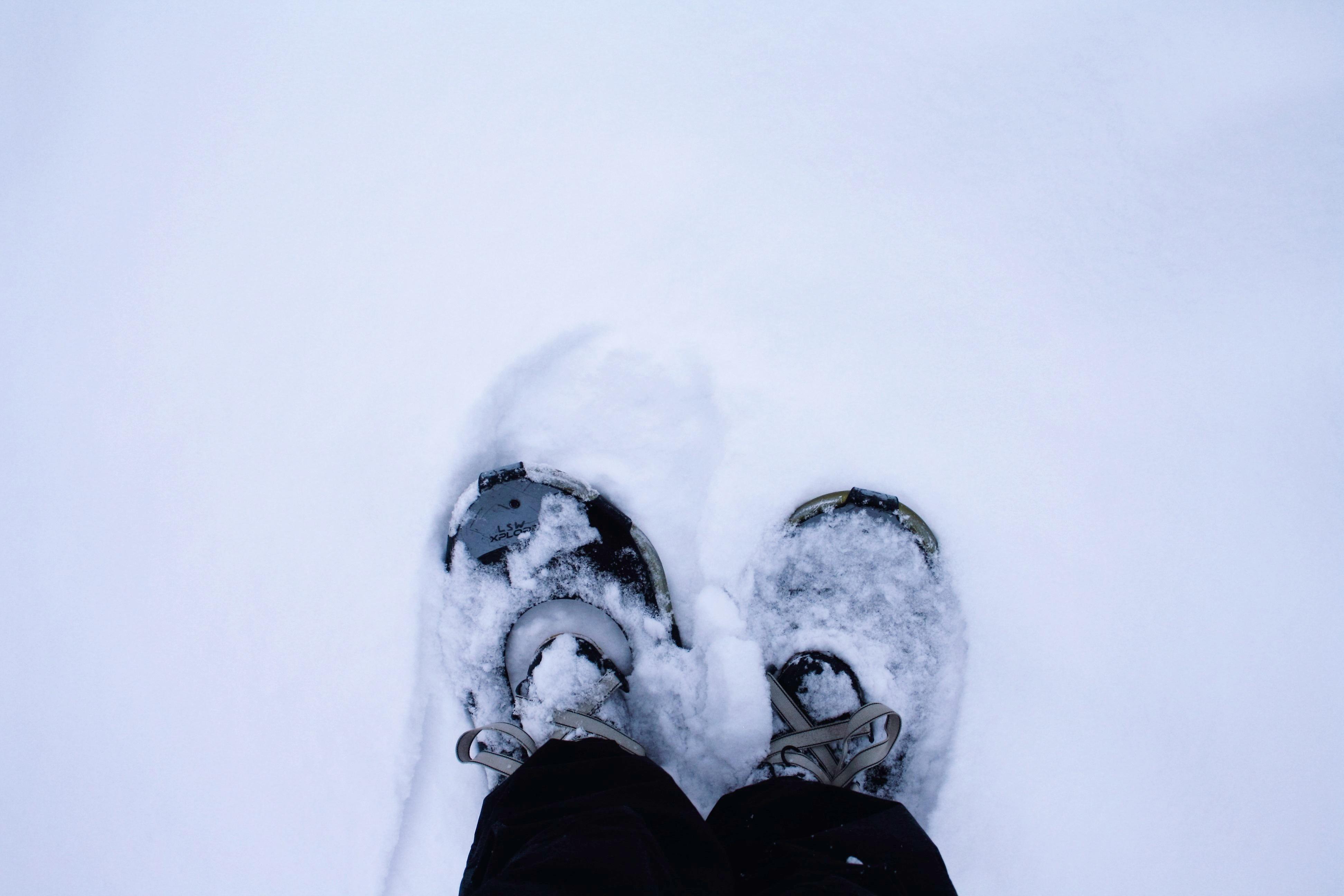 Lumikenkien Valinta