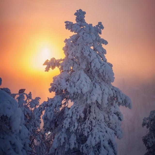 Ollapa viel tunturissa ruka kuusamo lumenkoordinaatit kaamos Lue loppuun rarr