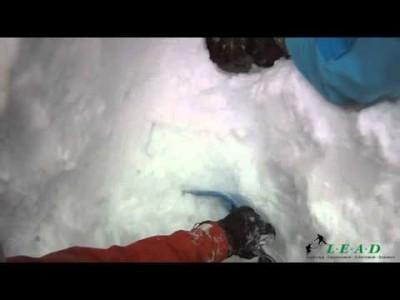 Kanadan syvässä puuterilumessa puukaivot ovat todellinen off-pisteiden vaaratekijä. Etenkin havupuiden läheisyydessä lumi saattaa jäädä oksiston läheisyyteen niin ilmavaksi, että laskija uppoaa puun ja tiiviimmän lumipatjan väliin kuin kaivoon. Videossa er