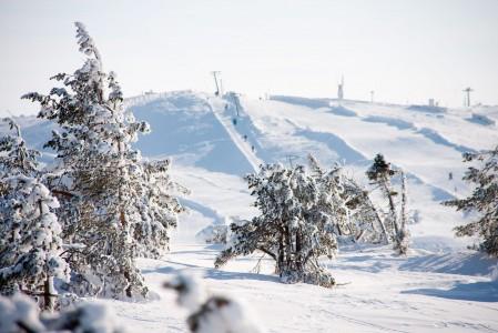 Levin pisimmällä rinteellä on mittaa 2500 metriä. Hiihtoalueen suurin korkeusero on 325 metriä.