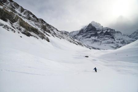 Grindelwaldissa laskiessa luonto on lähellä. Rinteessä ja heti sen ulkopuolella voi lähes kirjaimellisesti törmätä vuorikauriisiin tai hissin yllä liihottavaan kotkaan.