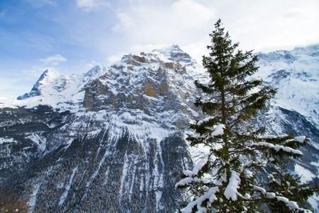 Jylhä rotkolaakso ja 400-metrinen pystysuora kalliopudotus erottaa Mürrenin ja Wengenin alppikylät toisistaan.