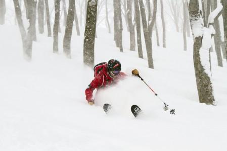 Hakuba Cortinan puiden väliin mahtuu paljon maagista puuterihiihtoa.