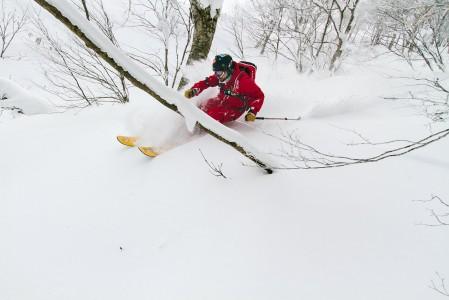 Hakuba Cortinassa lähes jokaisen offarikäännöksen saa ajoittaa sopimaan puiden väliin. Puista paljasta lumipintaa laakson perällä ei juurikaan esiinny.