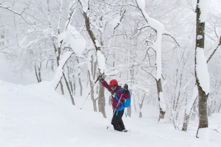 Hakuba Norikuran lumisessa metsässä on vaikea keksiä valittamisen aiheita tai murehtia ylihuomista.