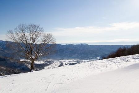 Hakuban Happo One -hiihtokeskuksen legendaarinen Kitaone-kumpareikkorinne alkaa tästä