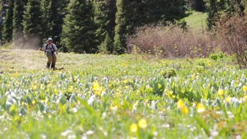Huhtikuusta heinäkuuhun voi tehdä paljon muutakin kuin leikata nurmikkoa