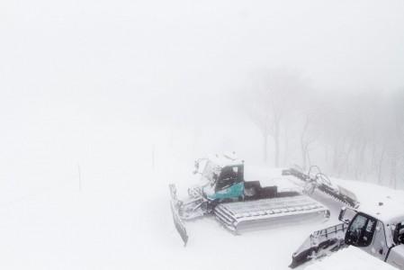Lumisateessa seisovat lumikissat katsovat, että pian olisi tonneittain töitä.
