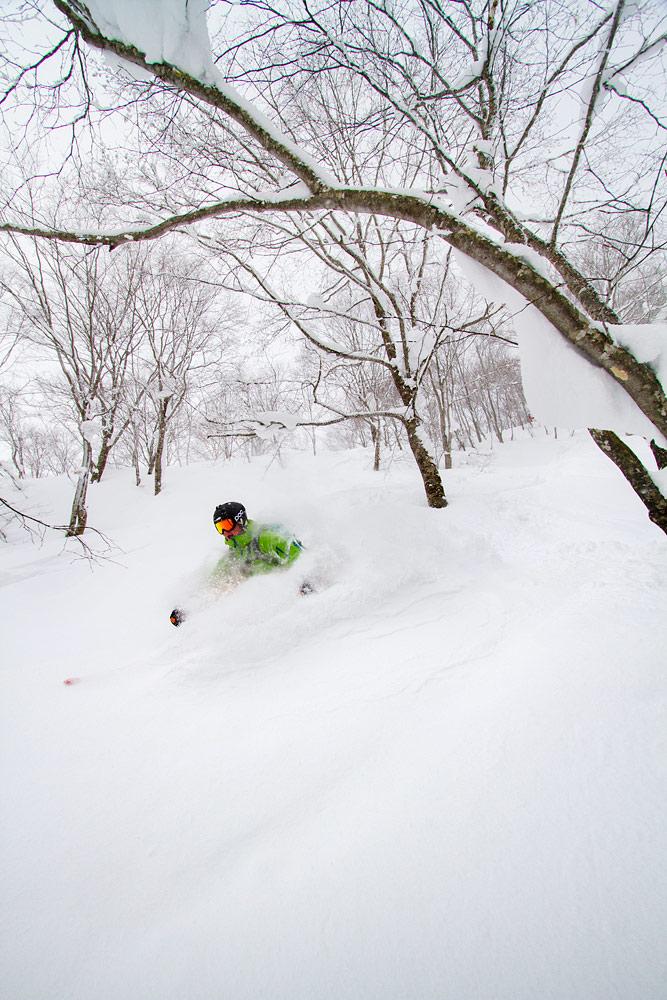 Hakuba Norikuran koskemattomassa lumessa saa kahlata laaksoa kohti vyötärön syvyydelle uponneena.