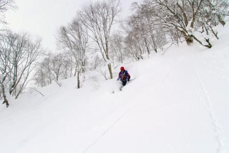 Pehmeää reittiä Hakuba Norikuran harjanteelta Cortinaa kohti.