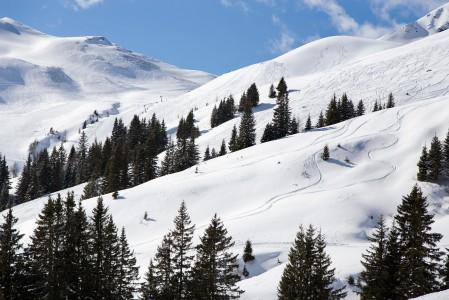 Pieni Seekarin hiihtoalue aivan Saalbachin rinnekartan ylänurkassa oli oppaan mielestä koko laakson parhaimmistoa.