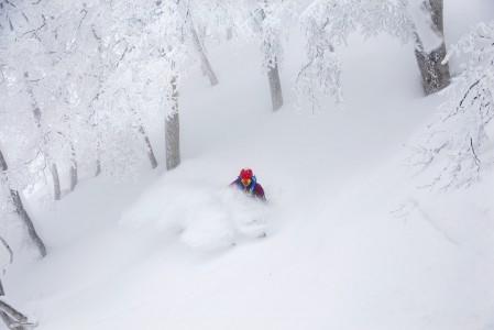 Nozawa Onsenin metsissä on jopa todennäköistä päästä etenemään lumipilven sisällä lähes painottomasti pöllytellen