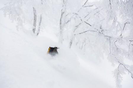 Nozawa Onsenin valkoiseksi kuorrutetuissa metsissä voi kokea taianomaisia laskuja.