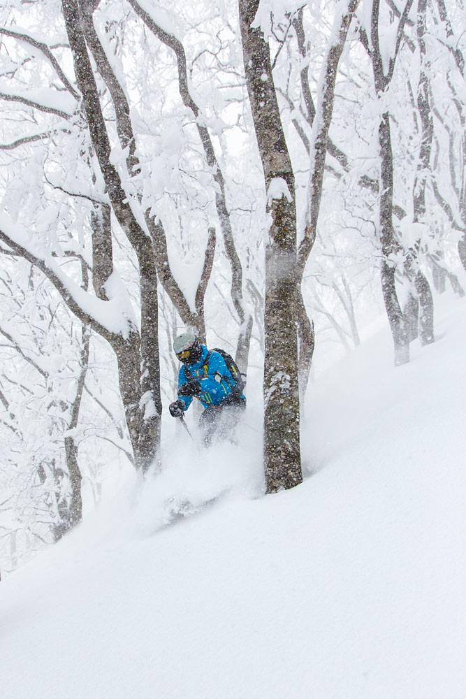 Nozawa Onsenin puiden väliin mahtuu kohtuullisesti. Risukko on harvoin liian tiukkaa, mutta kuitenkin riittävän tiuhaa auttamaan näkyvyydessä ja lumen pitävyydessä.