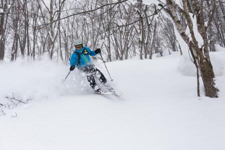 Seki Onsen tarjoaa pienimuotoista, mutta syvää metsähiihtoa. Kuvan laskijan alla olevan lumipatjan paksuudeksi kerrottiin 450 cm.