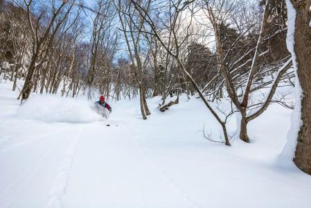 Kurodaken kabiinihissin alapuolelle jäävät metsäpätkät ovat Hokkaidon haastavimmasta päästä. Muita laskijoita näissä maastoissa on vain kourallinen.
