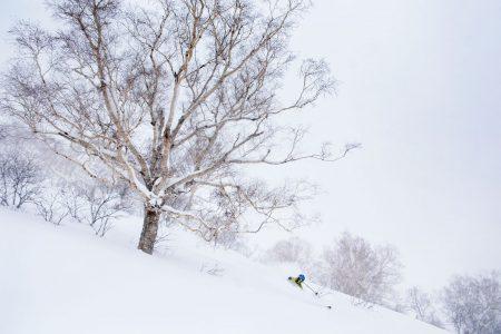 Kiroro on yksi maailman takuuvarmimmat puuterikelit tarjoavista hiihtokeskuksista. Täälläkin pehmeän lumen jahtaajia on sen verran runsaasti, että koskemattomille alueille pääsee varmuudella vain skinnaillen.
