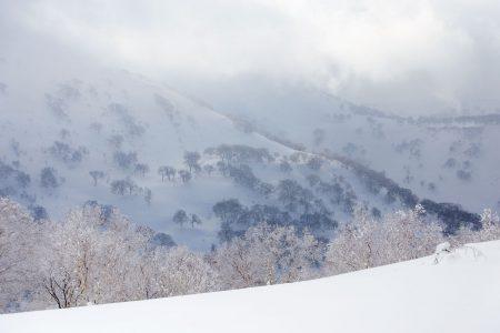 1488-metrisen Mt. Yoichi-daken ympäristössä riittää pehmeää temmellyskenttää. Itse huipulle kannattaa mennä vain tyynellä kelillä ja hyvällä näkyvyydellä. Muulloin kannattaa pysyä viereisillä metsäisemmillä skinnailumäillä.