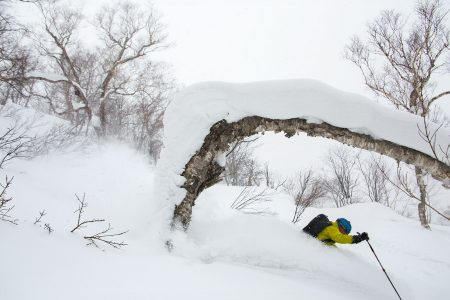 Nisekossa pehmeää lunta sataa paljon, mutta oman koskemattoman laskusiivun löytämisessä tarvitaan nopeutta ja oveluutta.
