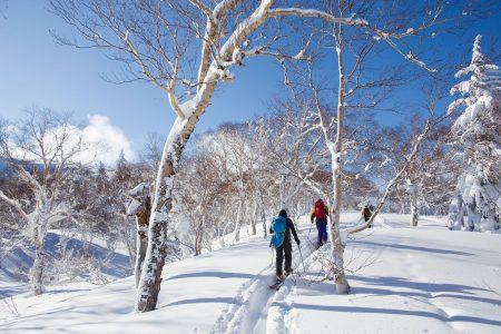 Sapporo Kokusain yläasemalta Asaridaken huipulle on reilun puolen tunnin nousu leppoisan loivassa maastossa.