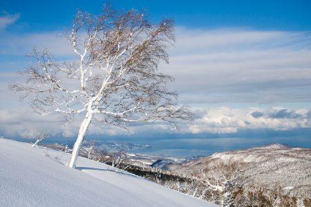 Sapporo Kokusain Asaridake-huipulta näkyy Otarun kaupunkiin ja kauas Japaninmerelle.