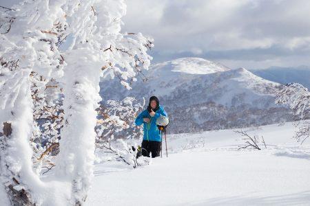 Sapporo Kokusain Asaridake-huipulta 1 287 metristä lähtee lukuisia hyviä laskulinjoja, jotka jatkuvat lähes 630 metrissä olevalle ala-asemalle saakka.