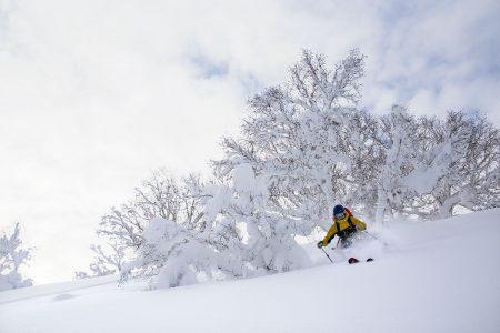 Sapporo Kokusain alueella rinteiden ulkopuolella on virallisesti kiellettyä laskea. Onneksi kieltoa ei yritetäkään valvoa, muuten nämä upeat maastot jäisivät hyödyntämättä.