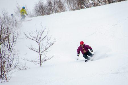 Hokkaidon piilopaikassa Iwanai Resortissa lumikissa nostaa nauttimaan sekä offareiden että vanhojen rinnepohjien koskemattomasta lumesta.