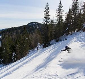 Koli - hiihtokeskus