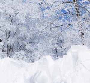 Niseko - hiihtokeskus