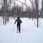 Oppdal_hiihtäjä
