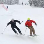 sappee skier cross