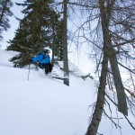 Krippenstein forest off-piste