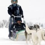 Lillehammer koiravaljakko hiihtokeskus laskettelukeskus