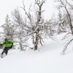 Olos Lapland ski powder