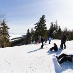 Koli hiihtokeskus Ipatti huippu