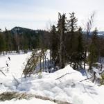 Koli hiihtokeskus Ipatti maisema