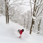Hakuba Cortina powder