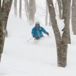 Hakuba Cortina powder skier