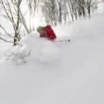 Hakuba Cortina powder skiing