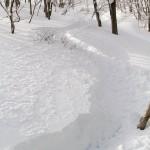 Hakuba Cortina powder tracks