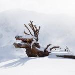 pitztal rifflsee ski resort