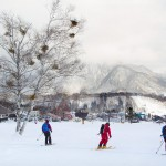 hakuba tsugaike ski center