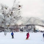 hakuba tsugaike ski center