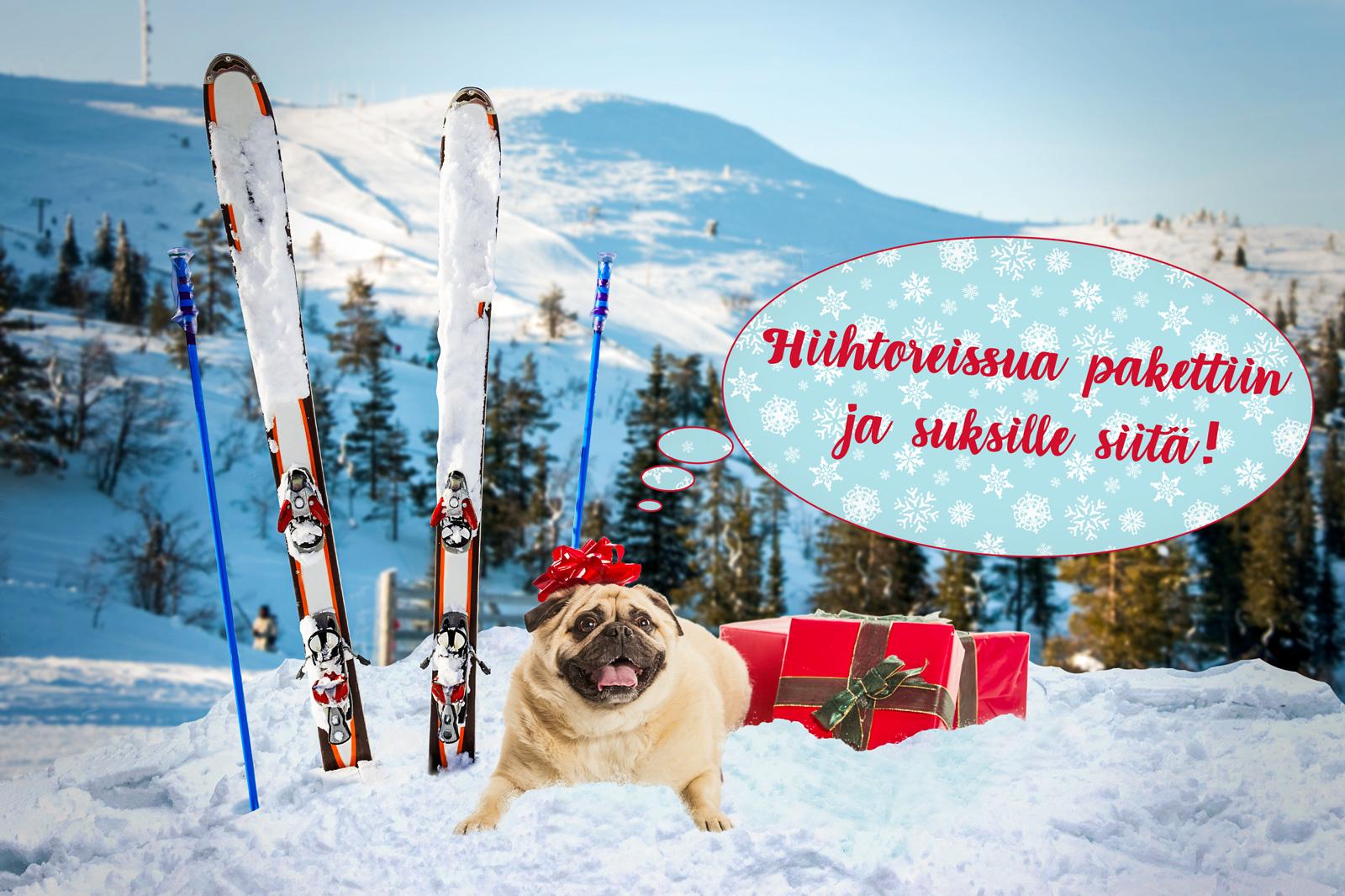 Joulukoira kehoittaa laittamaan hiihtoreissua pakettin ja suksille siitä!