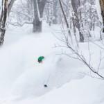 nozawa onsen powder snow