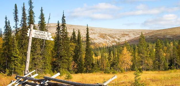 Viitat johdattavat perille - merkittyjä kesäreittejä on noin 350 kilometriä.