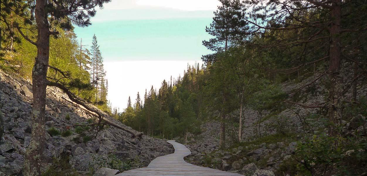 Pyhä-Luoston kansallispuisto yhdistää kuuluisat tunturikeskukset ... 61c7f612b0