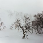 asahidake skiing terrain