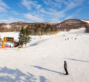 kamui ski links ski resort